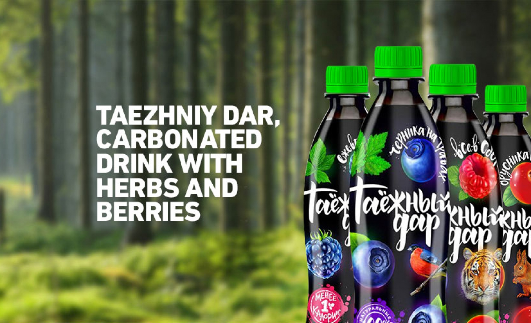 Sparkling drink based on herbs and berries «Taezhniy Dar»